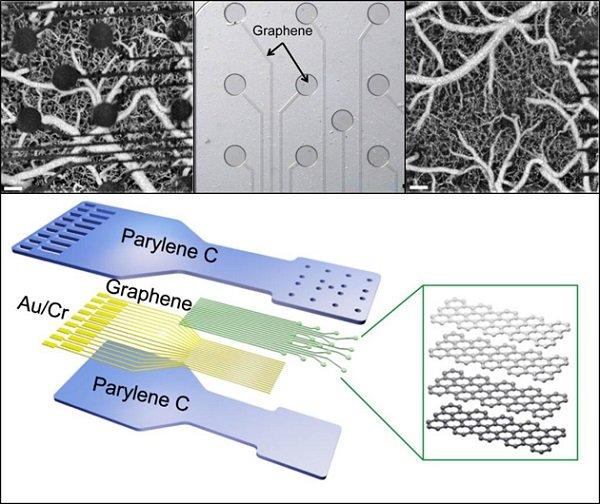 darpa-graphene-brain-sensor