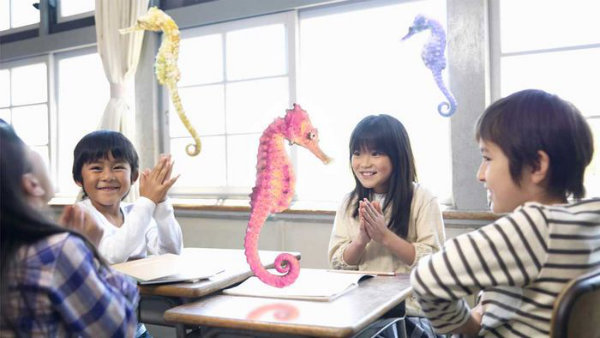 seahorses_1136.0