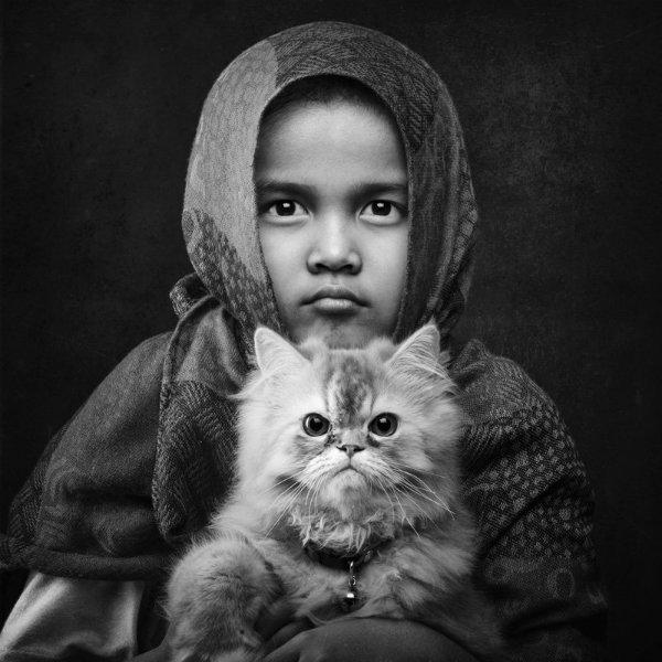 فیونا دختری که در عکس است، دختر کوچکتر عکاس آریف سیسواندونو است. او از گربه می ترسید و به همین دلیل خانواده اش سرپرسی دو گربه را به عهده گرفتند. پس از گذشت هفت ماه او دیگر از گربه نمی ترسد.