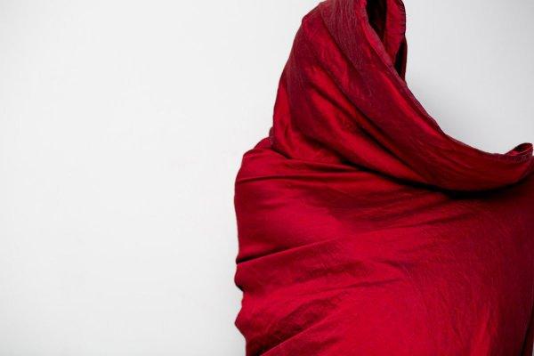 کورتنی کولانتونیو عکاس در باره این عکس می گوید: «بیشتر عکس های چهره نگاری یا پرتره به صورت شخص بستگی دارند. اما وقتی پوشیده باشد از حرکات، اندام، و حتی تصور ما از صورت آنها می توان یک وجه دیگر از شخص را دید.»