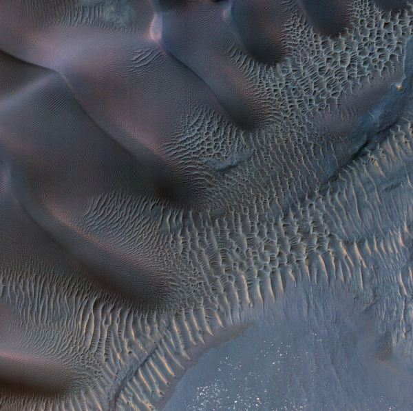 این تصویر به تپه های شنی در منطقه Noachis Terra مربوط می شود مساحت آن به بیش از نیم مایل می رسد. اختلافی که در اشکال و اندازه این تپه ها می بینید به خاطر تغییری است که در جهت وزش باد و همچنین میزان قدرت آن به وجود آمده.
