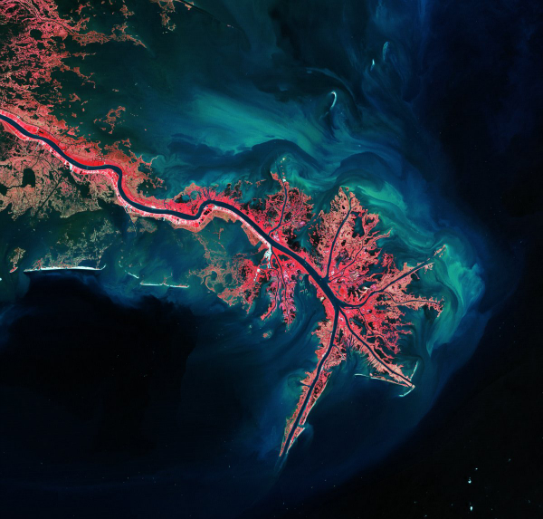 this-is-the-mississippi-river-delta-where-it-empties-into-the-gulf-of-mexico-vegetation-is-colored-pink-and-sediment-is-bright-blue-and-green-w600