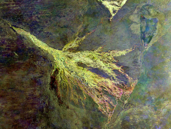 this-is-the-okavango-river-delta-in-botswana-the-purple-mass-in-the-center-is-chiefs-island-w600