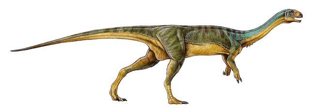 3_Chilesaurus_diegosuarezi_-__Gabriel_L_o_.0
