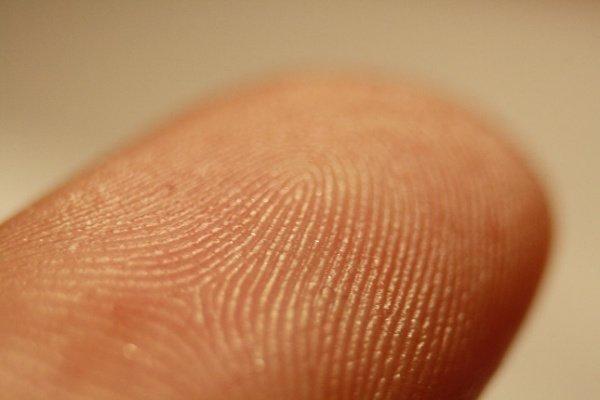 fingerprint-scanner-w600