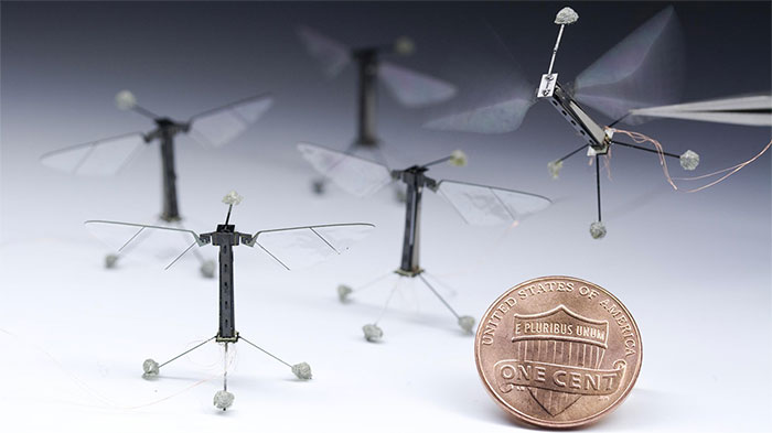BLNKT-micro-air-vehicle-flying-miniature-robots-the-size-of-a-penny