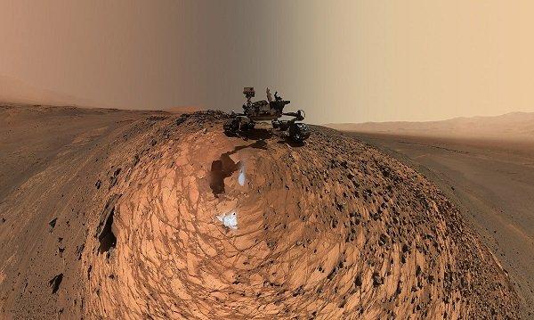 curiosity-belly-selfie02