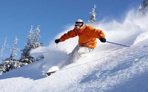 او را همواره در جاهای عجیب و غریبی می بینید؛با افراد مشهور، در حال اسکی کردن، سوار بر موج ها و ...