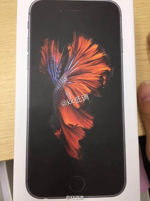 Alleged-iPhone-6s-box (1)