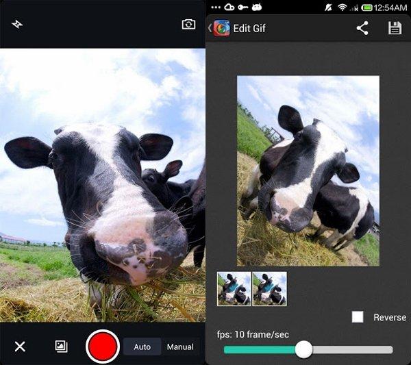 GIF Camera 1