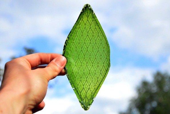 3-oxygen-generating-artificial-leaf-1