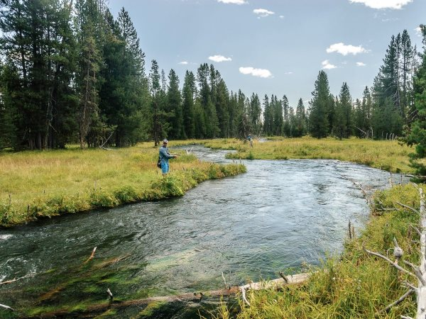 whitman-is-an-avid-fly-fisherwoman-when-her-oldest-son-was-16-he-fell-in-love-with-fly-fishing-and-got-whitman-into-it-she-used-to-buy-a-lot-of-fly-fishing-equipment-on-ebay-when-she-was-ceo-there