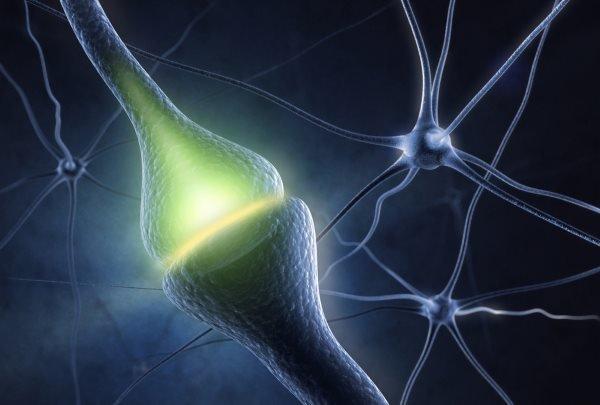 Neuron-brain-sleep