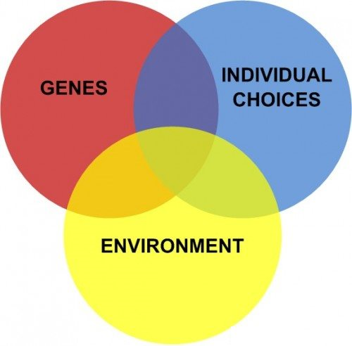 genes-environment-choices-500x492