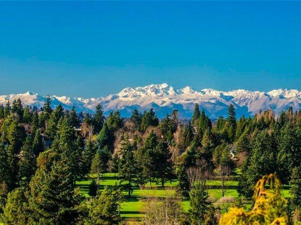 از حیاط پشتی این عمارت می توانید دریاچه واشنگتن، رشته کوه های المپیک و آسمان آبی سیاتل را تماشا کنید.