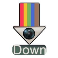 Insta Downloader
