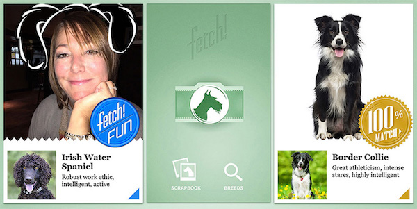 Fetchs-iOS-app-has-info-on-a-range-of-breeds-and-can-also-tell-you-what-breed-you-resemble