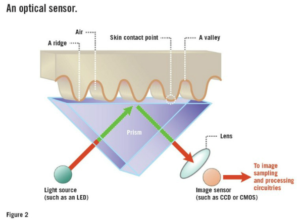 Optical-fingerprint-scanner-768x558-w600