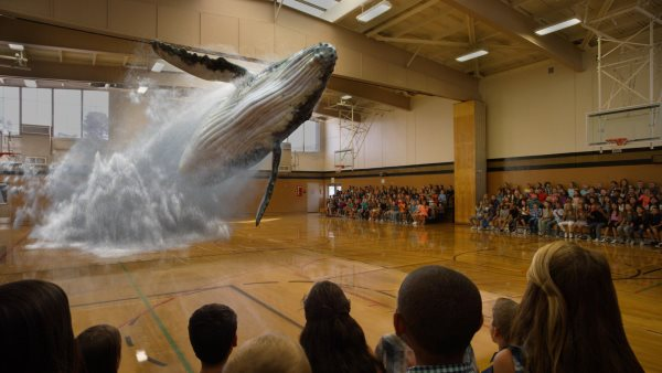 magic_leap_whale