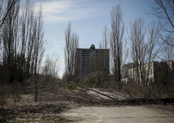 جا دارد اشاره نمائیم در سال 2002 میلادی، سازمان ملل برنامه بازسازی و توسعه چرنوبیل را راه اندازی نمود تا خسارت های بخش های وسیعی از اوکراین که آسیب دیده بودند را جبران نماید.