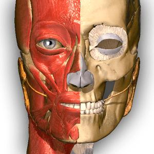 Anatomy Learning - 3D Atlas