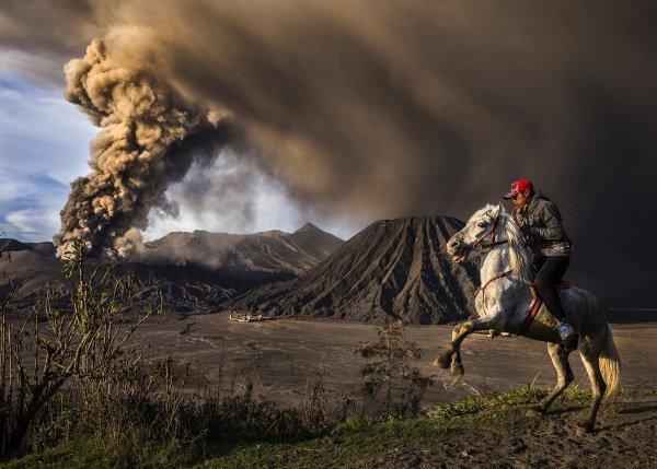 این عکس در جریان فوران کوه برومو گرفته شده است و همانطور که در تصویر می بینید اسب به خاطر صدای آزاردهنده این فوران به هیجان آمده است.