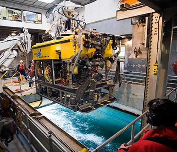 یکی از دو ربات به خدمت گرفته شده توسط ریزویگ و همکارانش برای پایش چنگ اسفنج