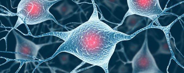 stemedix-brain-neurons-parkinsons