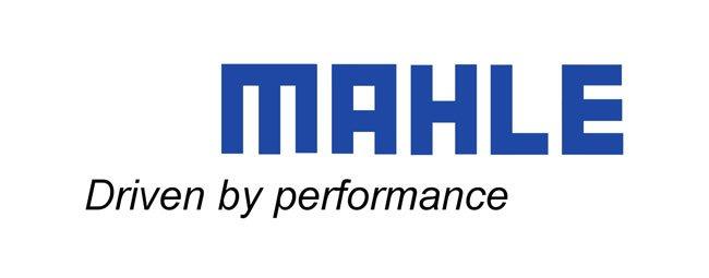 MAHLE-1