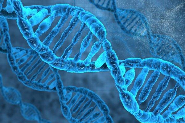 google_genomics_stanford_university_0