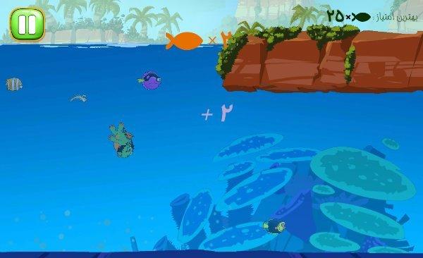 پرندگان ماهی گیر - بازی