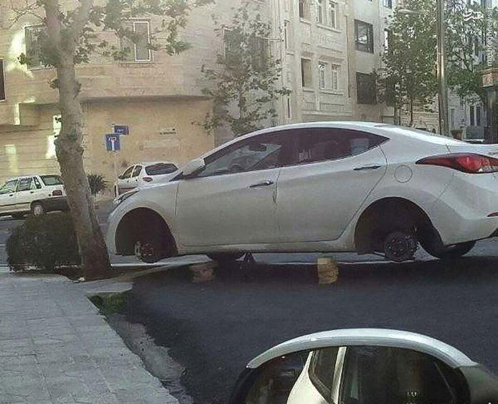 car-dozd-5