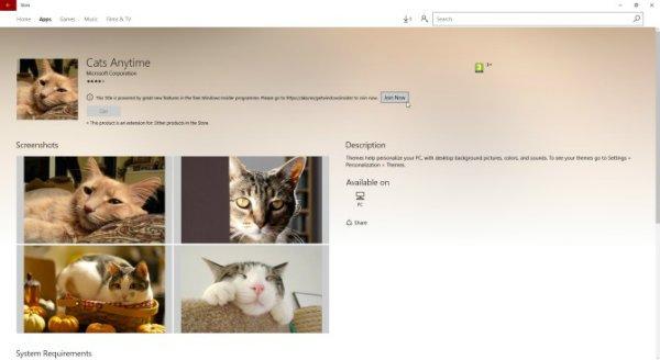 windows-10-theme-cats-everywhere-w600