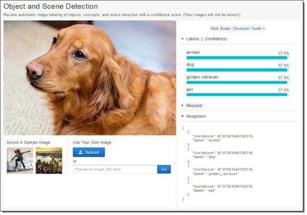 amazon_rekognition_dog-0-w600