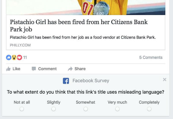 facebook-survey-1
