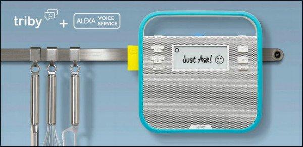 triby-alexa-voice-service