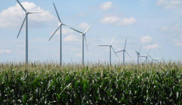 wind-farm-0