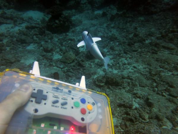 ربات شناگر SoFi طبیعی ترین ماهی مکانیکی ساخته شده تا به امروز است [تماشا کنید]