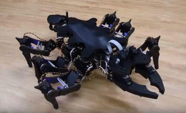 رباتی که مانند حشرات واقعی راه میرود