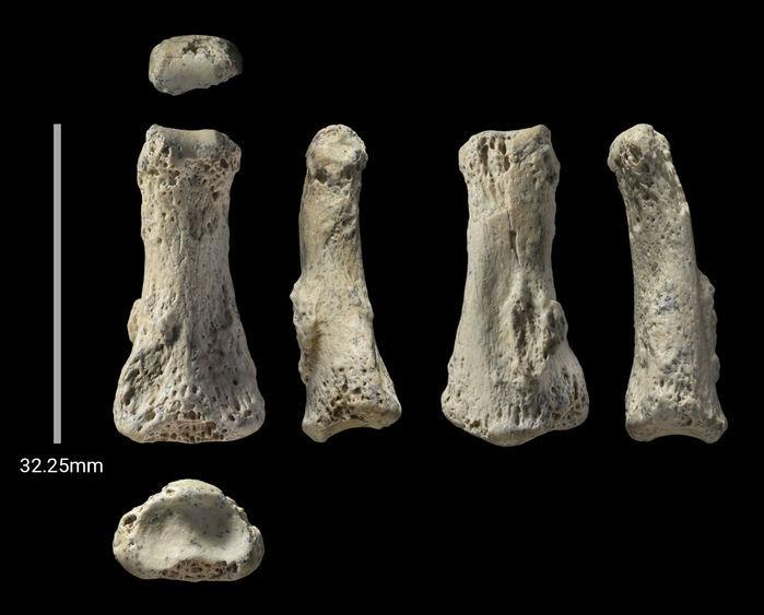 کشف فسیل انسان در عربستان از سکونت 88 هزار ساله در این منطقه خبر می دهد