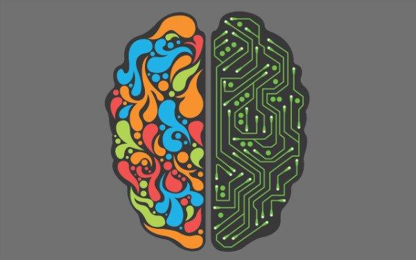 سمت راست و چپ مغز انسان