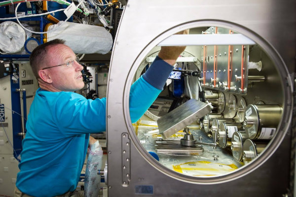 nasa astronaut barry butch wilmore setting up the rodent reseach 1 hardware in the microgravity science glovebox aboard the international space station به مناسبت ۲۰ سالگی ایستگاه فضایی: پروژه ۱۵۰ میلیارد دلاری ناسا چه کمکی به نوع بشر کرد؟ اخبار IT