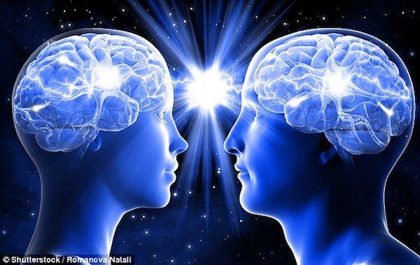 مغز زن و مرد