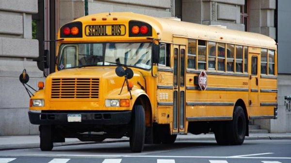مروری بر تاریخچه اتوبوس های مدرسه زرد رنگ؛ نوستالژیک و آمریکایی