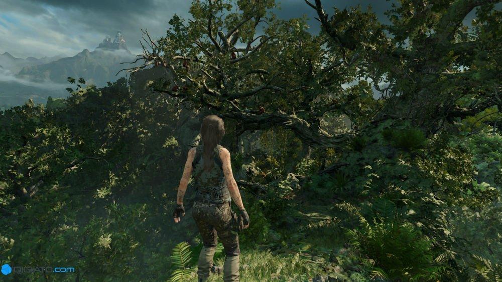 20180913121409 1 w1000 - بررسی بازی Shadow of the Tomb Raider؛ درجا زدن مهاجم مقبره