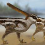 کشف فسیل کوچکترین دایناسور دنیا در کره جنوبی؛ گنجشکی از 110 میلیون سال پیش