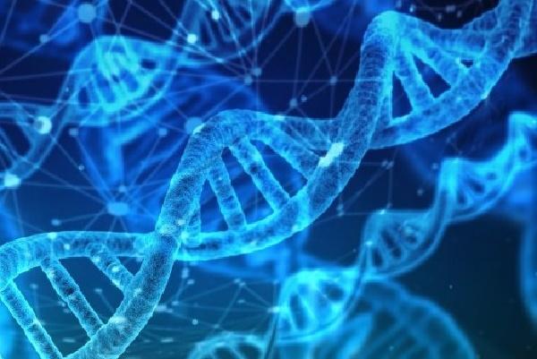تبدیل قرآن به DNA و تزریق آن توسط نوجوان فرانسوی