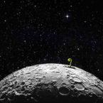 تنها گیاه رشد یافته روی ماه نابود شد؛ شکست اکوسیستم زنده چینی ها در قمر زمین