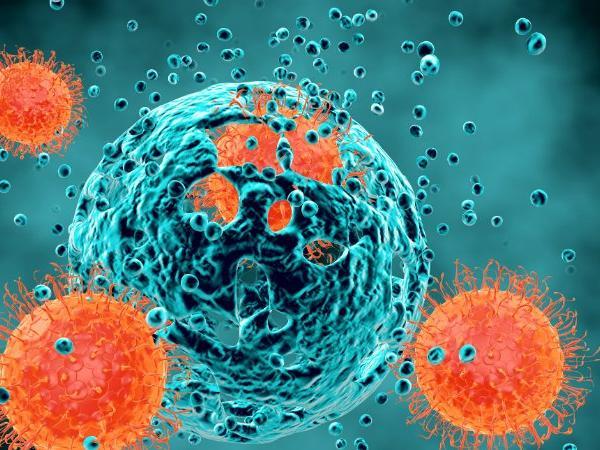 تومورهای سرطانی