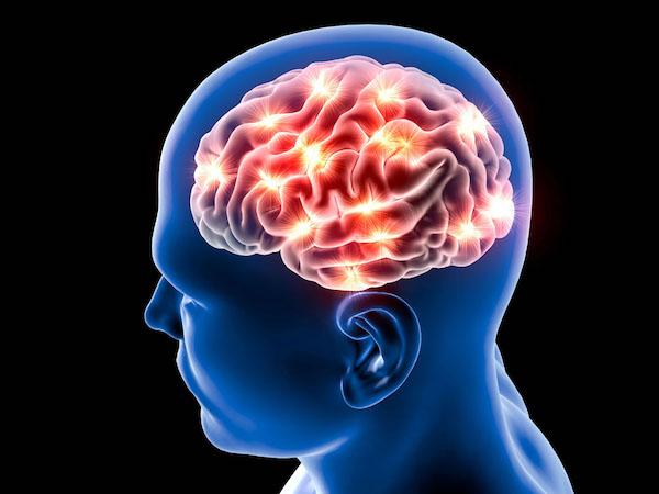 وابستگی عملکرد مغز به کبد انسان